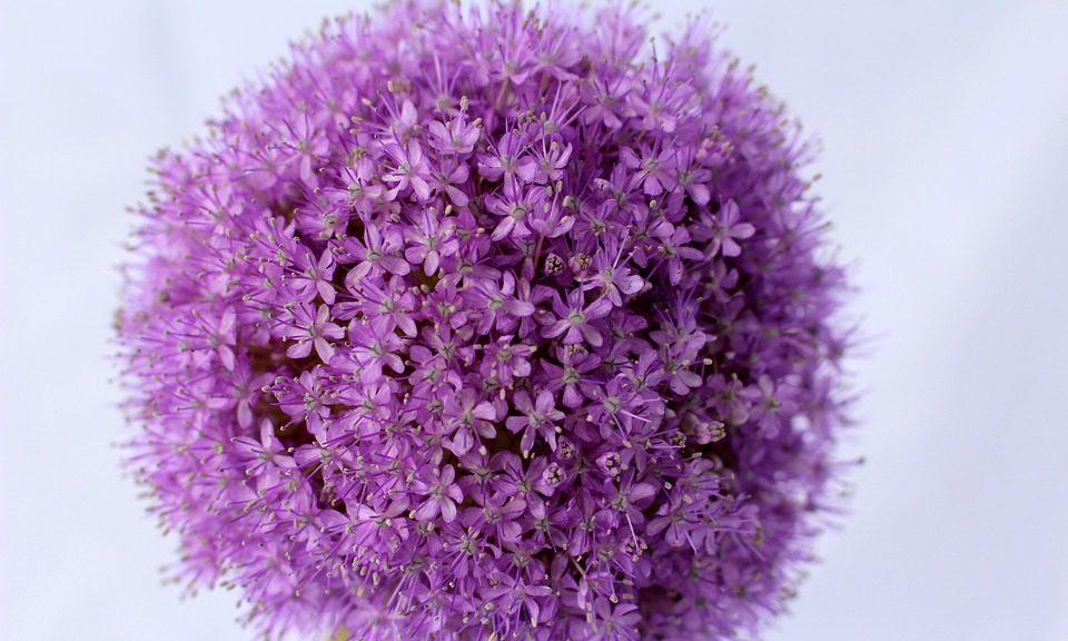 boule de fleurs artificielles